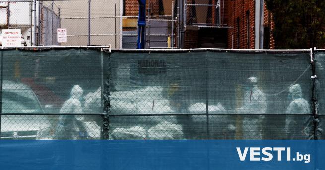 Ужас в Бруклин, 100 човешки тела в камиони - Теми в развитие ...