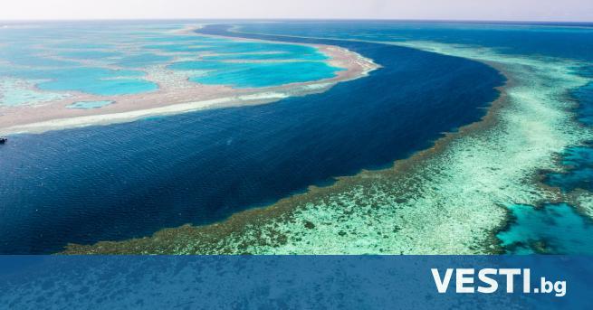 Г олемият бариерен риф трябва да бъде включен в списъка