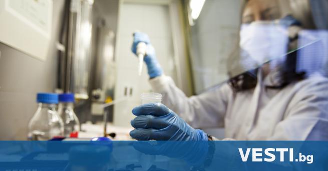 У чени са открили в Уганда форма на малария, устойчива