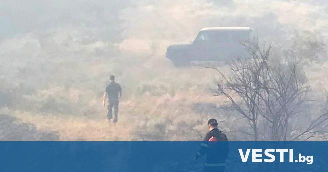 Р азследват смъртта на двама служители в горското стопанство, загинали