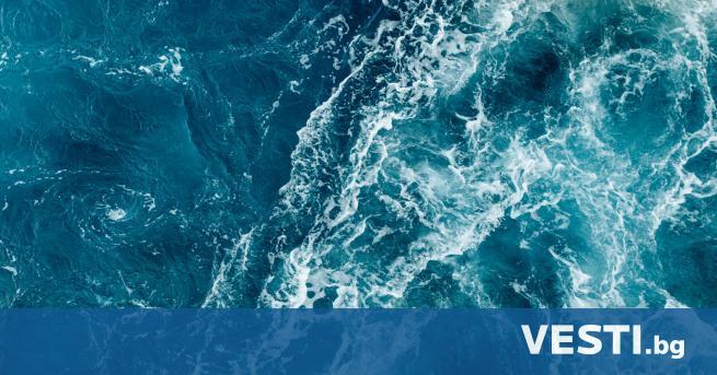 Майка почина, жертвайки се за децата си в открито море - Вдъхновени истории  | Vesti.bg