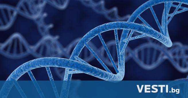 Д езоксирибонуклеиновата киселина, по-известна със съкращението ДНК, е един от