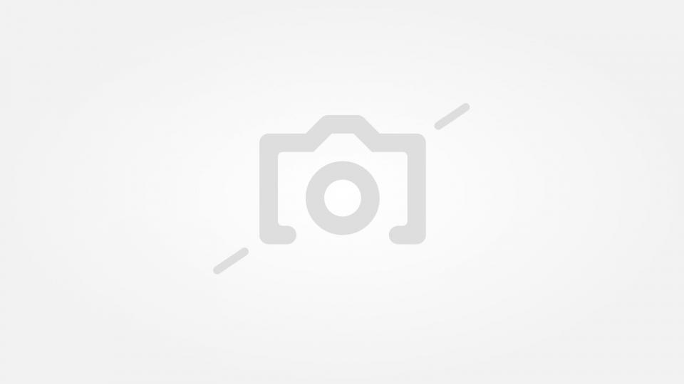 Бърза зелена салата с маринован лук