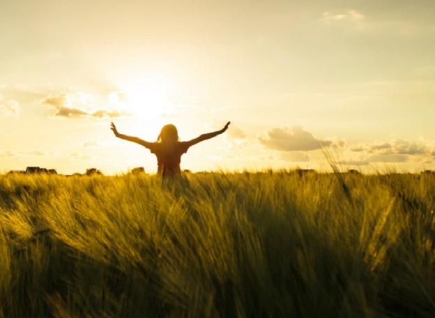 щастие реалкс поле