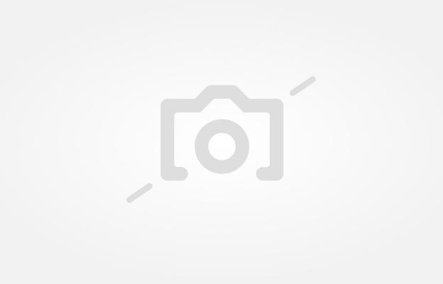 Красавицата и милиардерът: Сватбата на Миранда Кър и Евън Шпигел