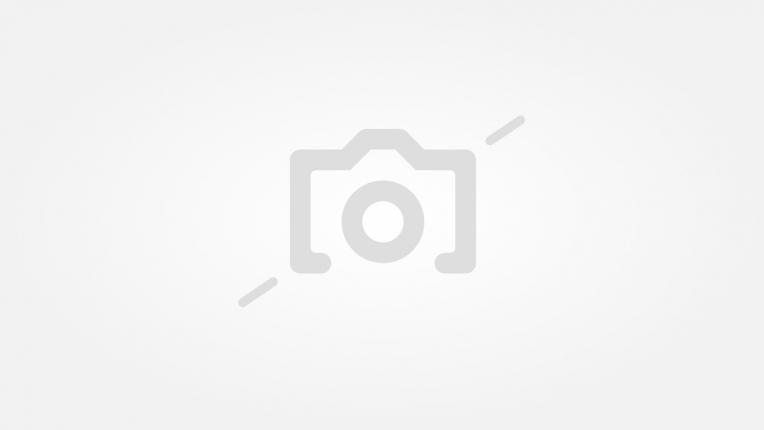 Видение в бяло: Анджелина Джоли пие чай в компанията на гепарди