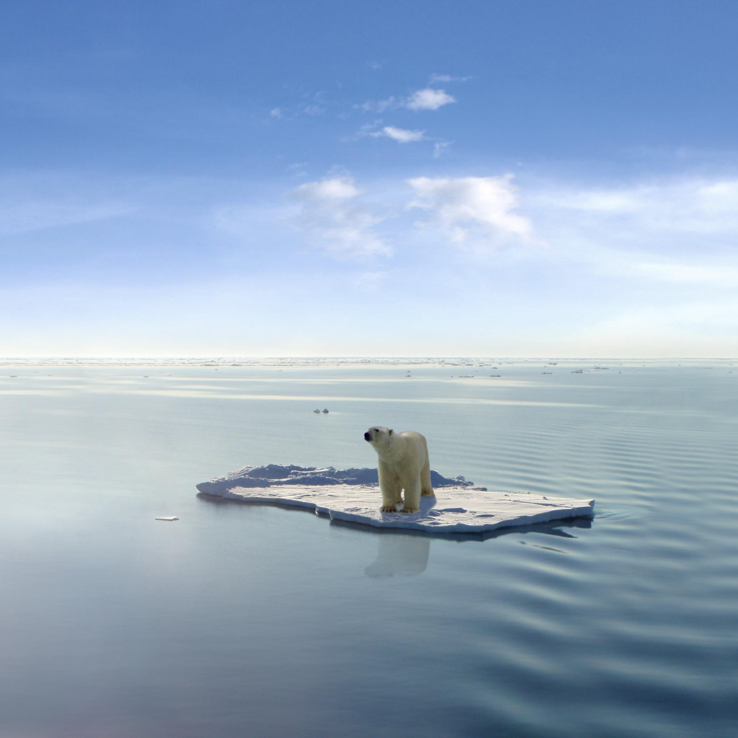 """Светът ще се """"изпече"""", ако не бъдат взети """"критични решения"""" по въпроса с климатичните промени"""