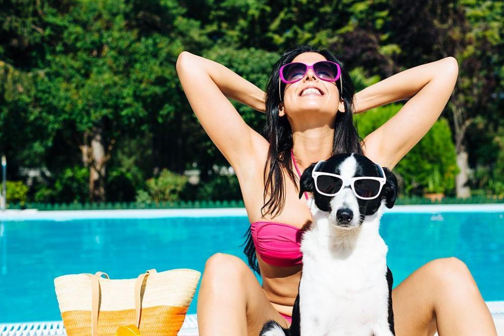 куче лято