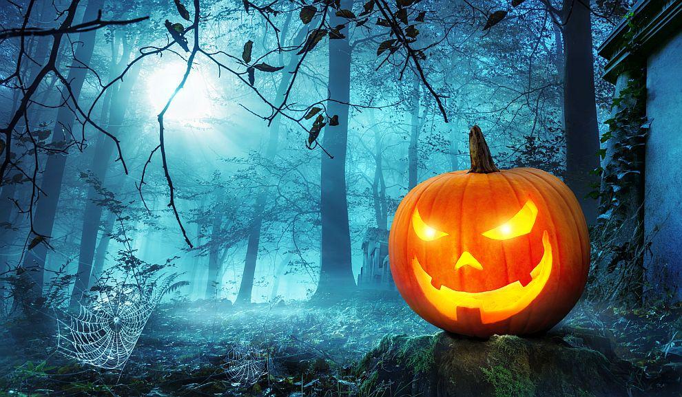 Почитателите на Хелоуин дълбаят тикви, маскират се, гледат филми на ужасите и си разказват страшни истории