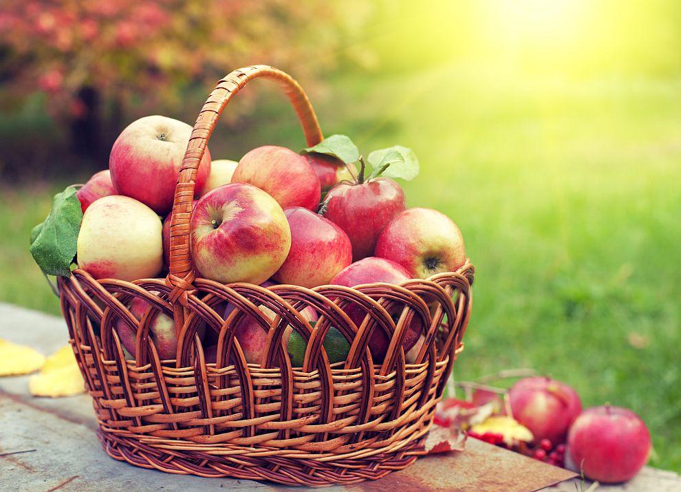 Ябълките са сред най-полезните храни за мозъка