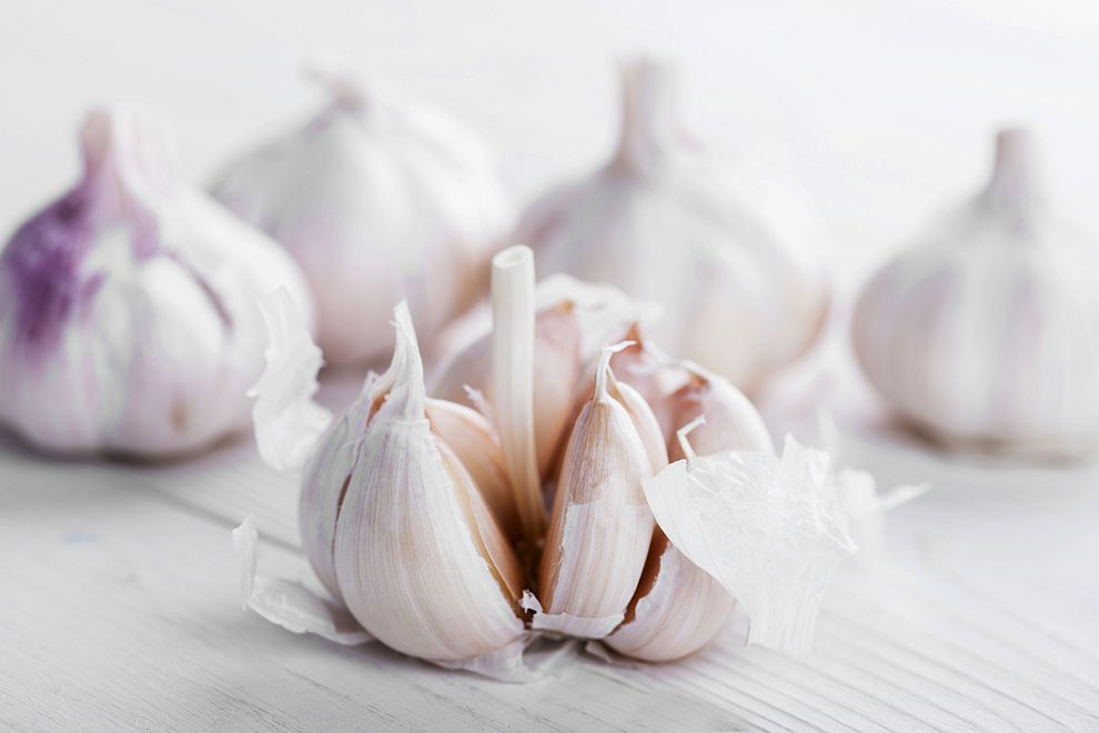 Специалистите препоръчват чесънът да се консумира суров, тъй като консервирането отслабва мощта му