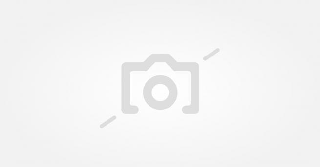 Снимка: Цял ТИР с карамфили за концерта на Василис Карас