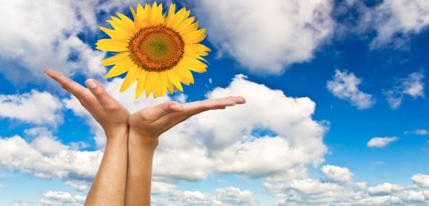 Отдавна е доказано, че слънчевите лъчи намаляват стреса и депресивните състояние